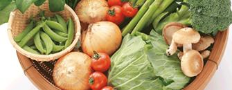 野菜、果実食材通販産直ひろしま
